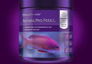 Anthias-Pro-Feed_L