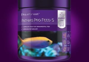 Anthias-Pro-Feed_S